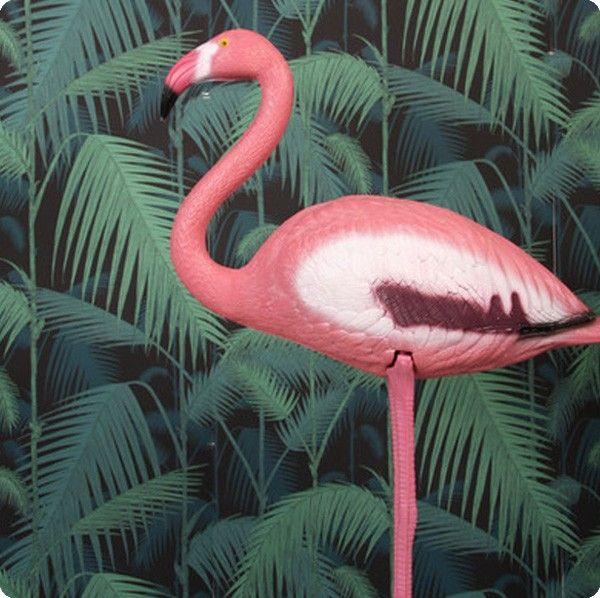 &K &K - Pink Flamingo