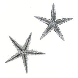 Silver Brittle Starfish 5cm