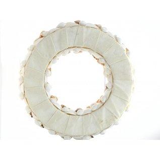 25cm Wreath with Shells