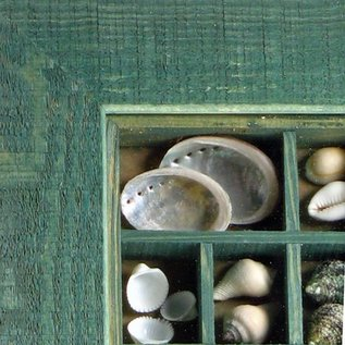 Green Maritime Picture with Shells, 20x15cm interior with 50mm frame