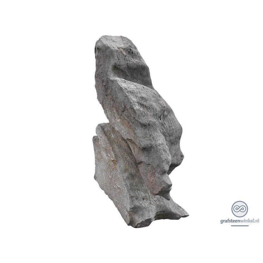 Grijs rotsblok