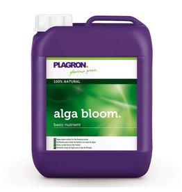 Plagron Alga Bloom 5 ltr