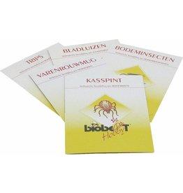 Bio Best Gaasvlieg (tegen bladluis)