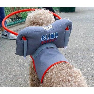 Muffin's Halo Blind Dog