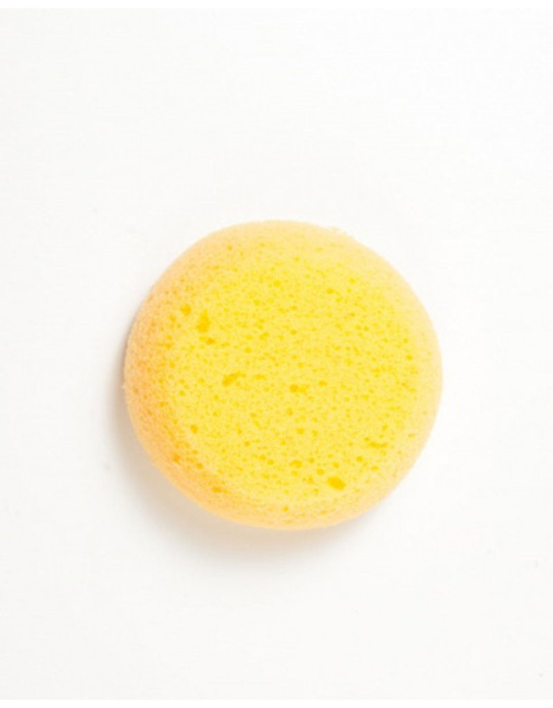 Small Round Sponge