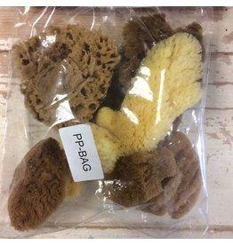 Natural Sponges Mixed Bag