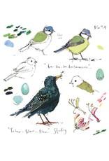 Sketchbook - Blue tit & Sparrow