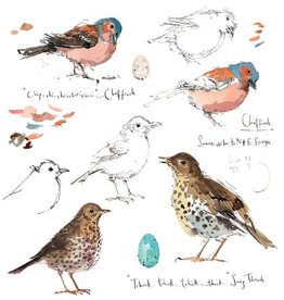 Sketchbook - Chaffinch & Song Thrush