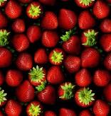 CLASSIC - Aardbei - Fruitsiroop