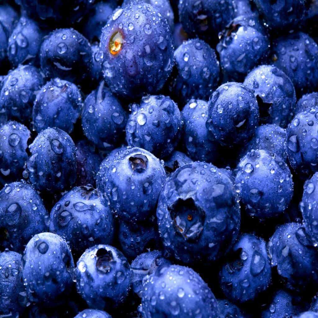 - Myrtilles - sirop de fruits