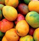 - Mango - sciroppo di frutta