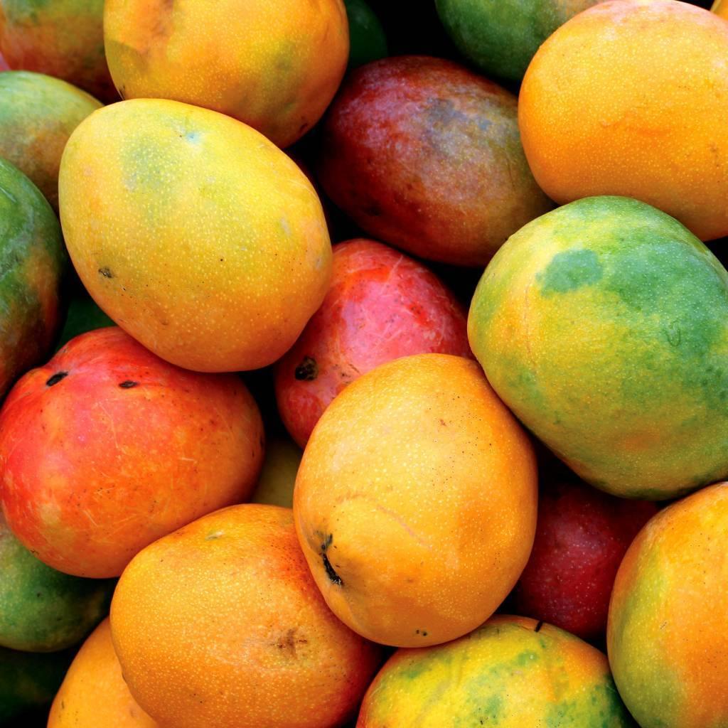 - Mango - Fruchtsirup