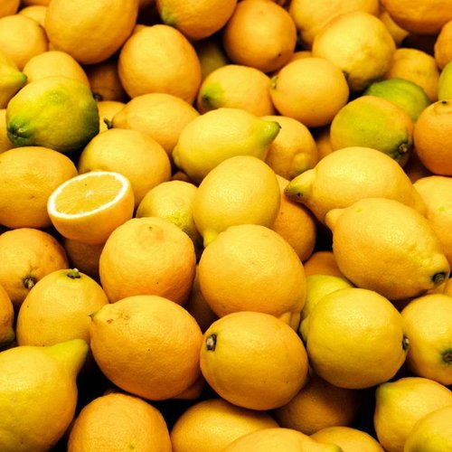 CLASSIC - Lemon - Fruit syrup