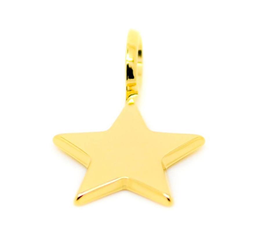 Charm Small Star PET-01.G