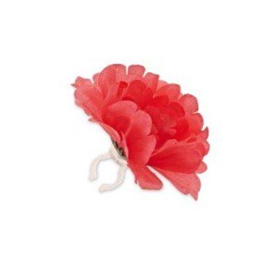 Basil Single Flower - coral