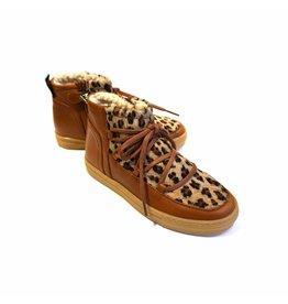 MAÁ MAÁ Abenaki Leopard