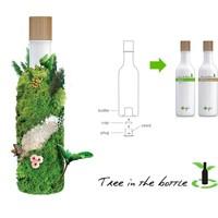 Green Tea Shampoo 250ml Tree-in-a-bottle