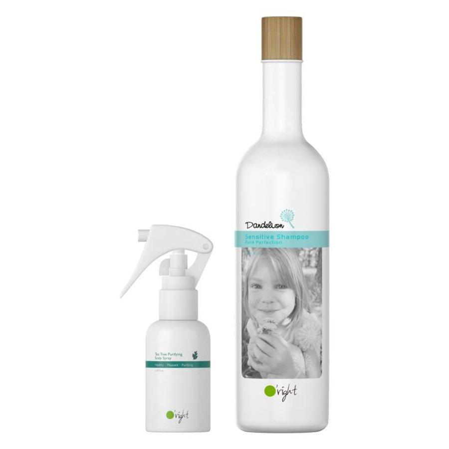 Weer naar school - Dandelion Set Shampoo + Tea Tree Scalp Spray