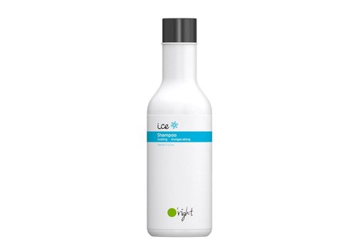 Ice Shampoo 100ml