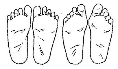 Vrije voeten