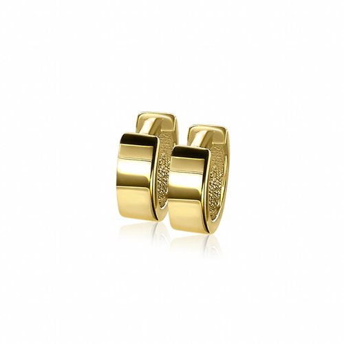Zinzi Gold Geelgouden Creolen ZGO123