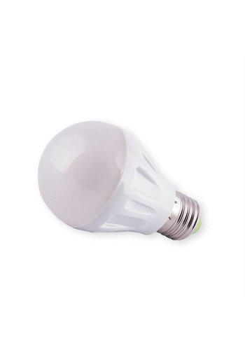 Neckermann Led-Lampe 3W 12V E27 B22
