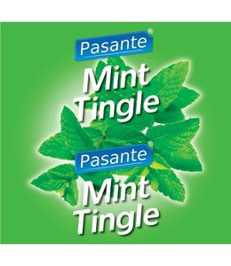 Pasante Pasante Mint Flavour Condooms 144 stuks