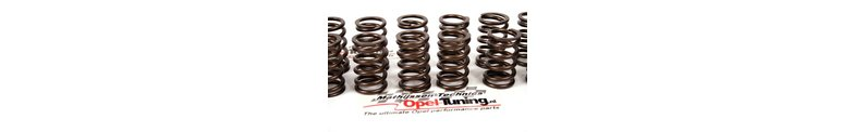Special uprated stronger valve springs