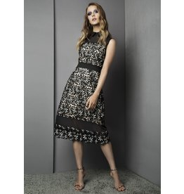 Fee G Lace Paneled Dress