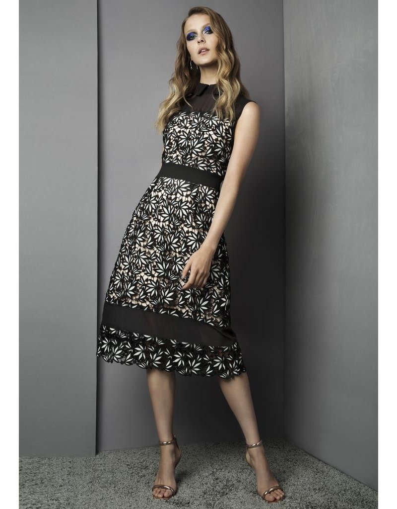Fee G Fee G - Lace Panelled Dress