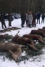 3 day Bald Wild Hunt in November 2017 to Uzdowo