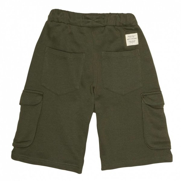 Austin Shorts Burnt Olive