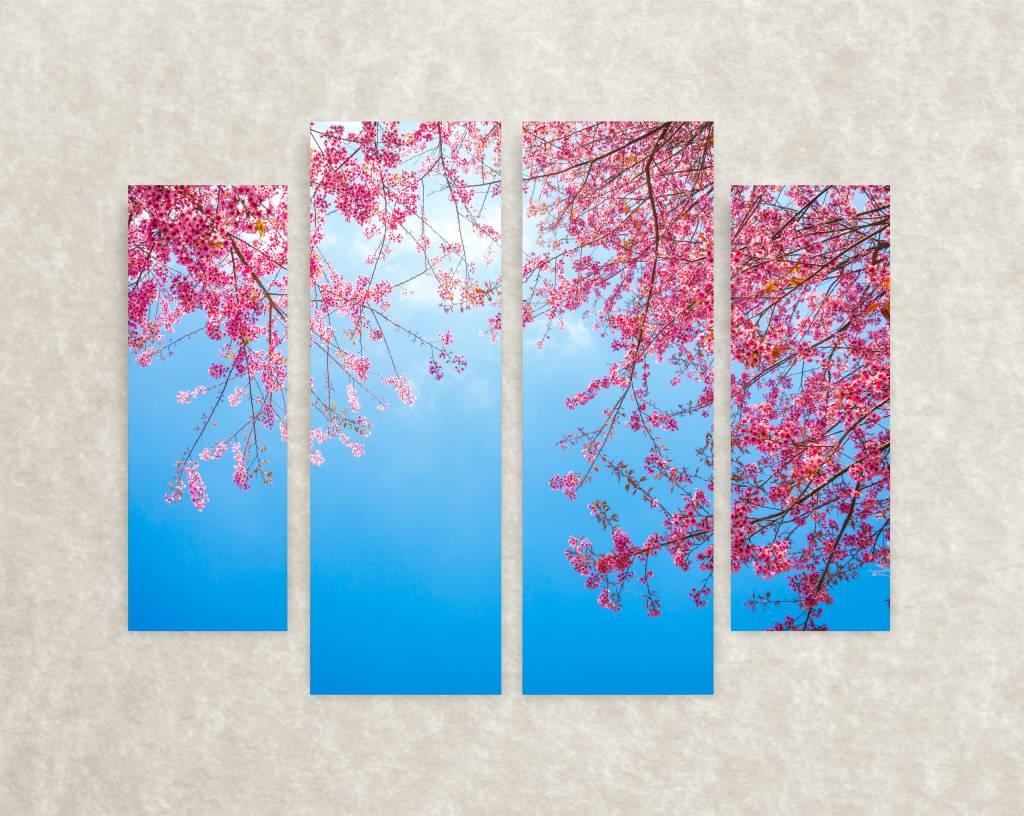 Canvas foto Flowering