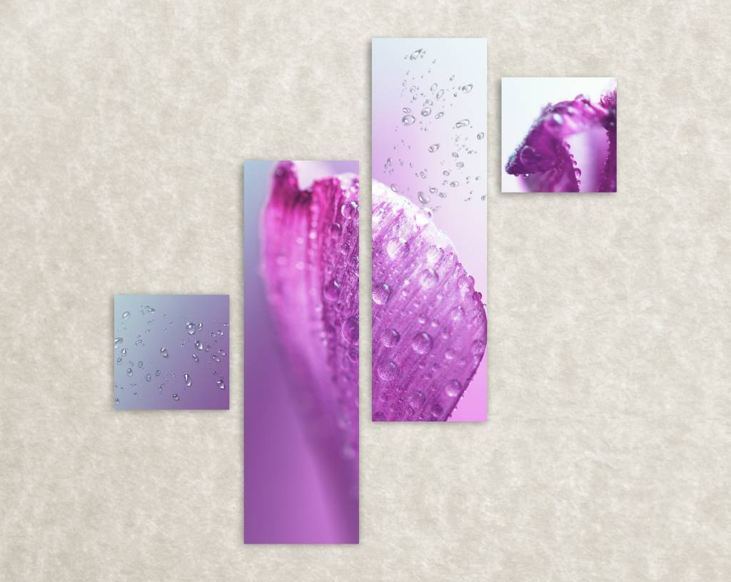Canvas poster Dew drops