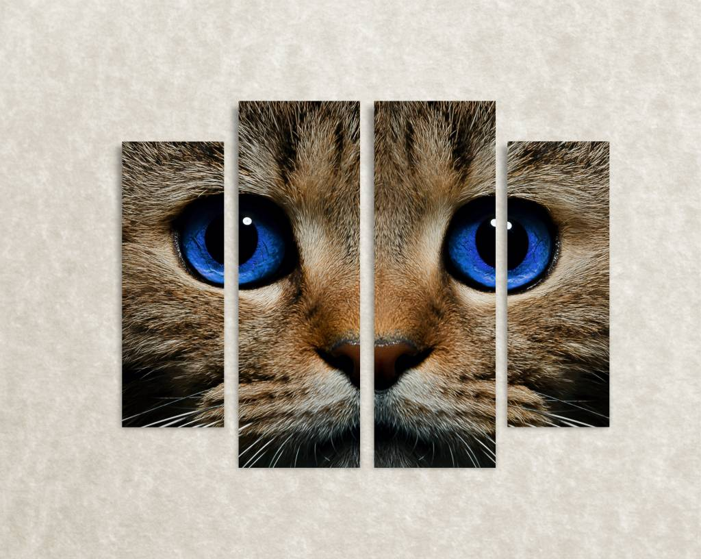 Canvas poster van kat