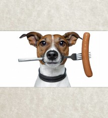 Hond en Worst
