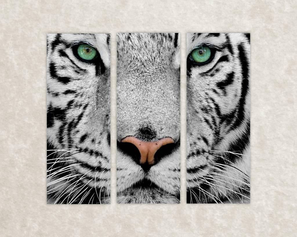 Canvas foto van witte tijger
