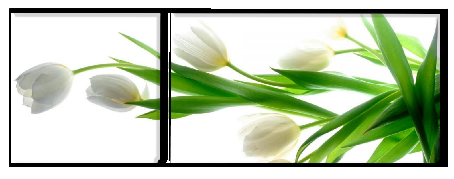 Met tulpen haal je de lente in huis - foto op canvas van tulpen