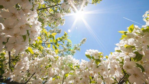 Muurdecoratie voorjaarssfeer - Vrolijk