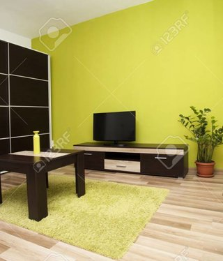BrandMiller Modern and simple living room interior