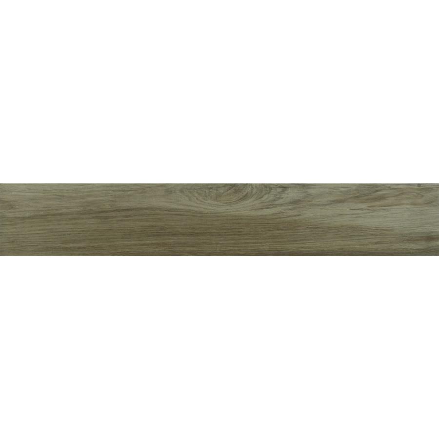 Ragno Woodplace R499 20x120 vt sughero