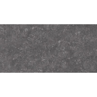 Vloertegel: Century Pietra blu Blauw 30x60cm
