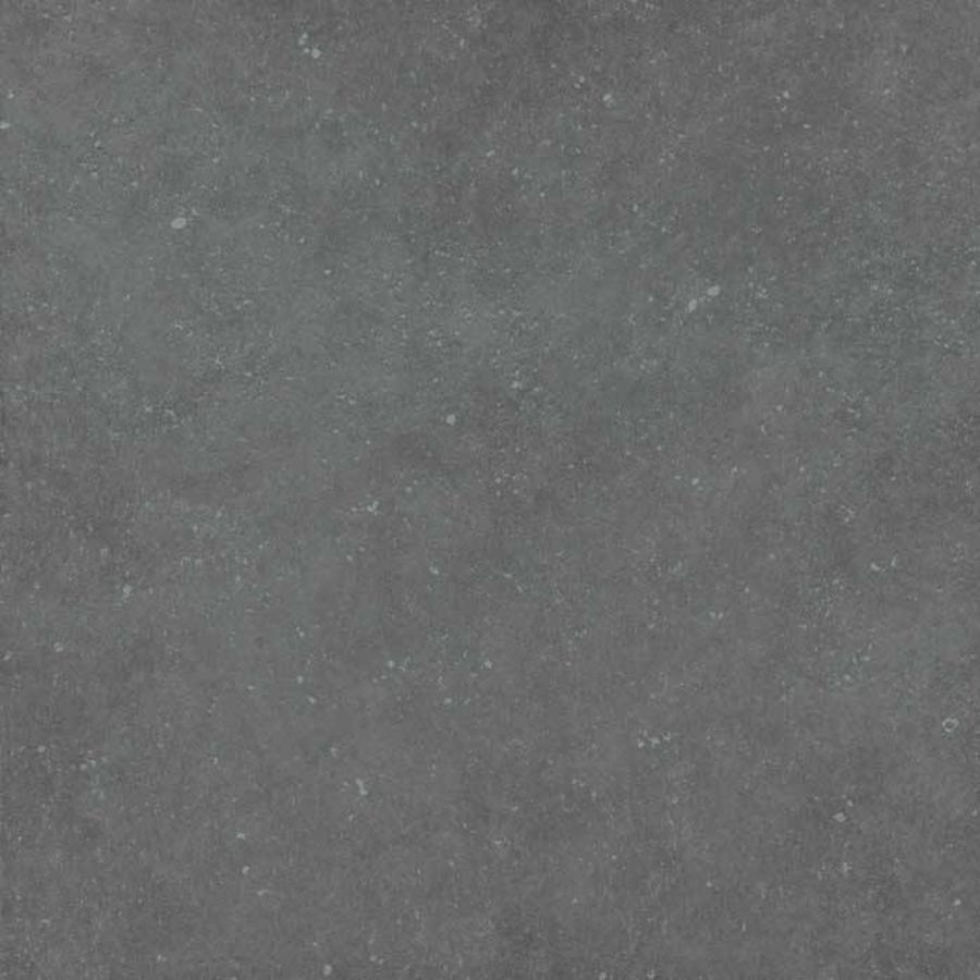 Pastorelli Loft 60x60 vt antracite nat P006113