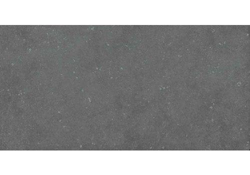 Pastorelli Loft 30x60 vt antracite nat P006116