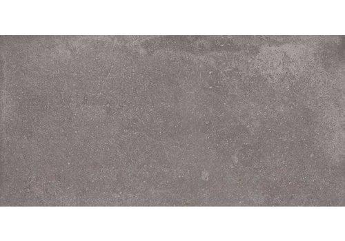 Vloertegel: Aleluia Avenue Grijs 30x60cm