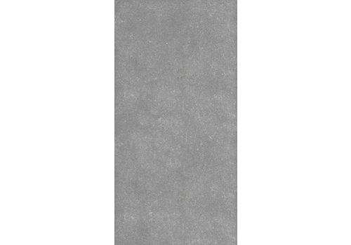 Vloertegel: Nordceram Bornit Grijs 30x60cm