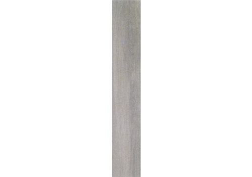 Vloertegel: Serenissima Acanto Grijs 20x120cm