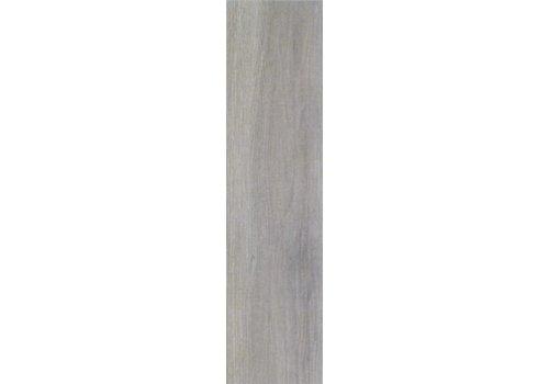 Serenissima Acanto 30x120 vt grigio rett