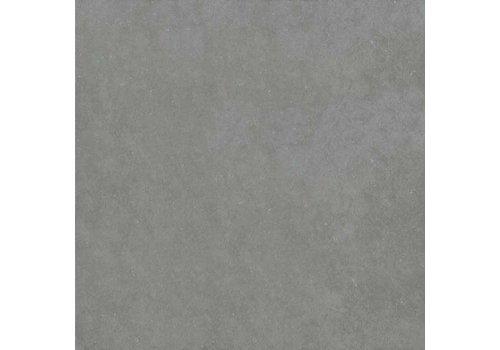 Pastorelli Loft 60x60 vt grigio nat P006112