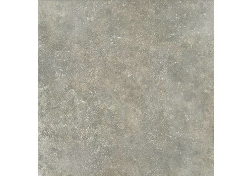 Ourthe rect 60x60x1,8 cm gris 003362